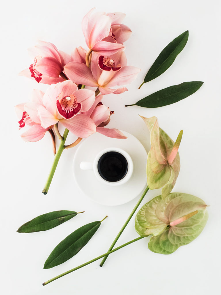 Coffee Flowers Photography Tips Blog